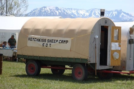 Tour a genuine sheep camp while enjoying the Hotchkiss Stock Dog Trials.