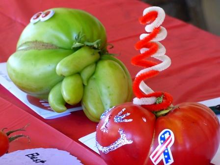 Winning Tomatoes